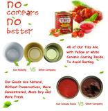 A importação de tomate concentrado de tomate orgânico de Tomate