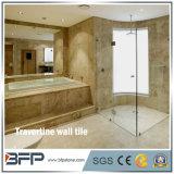 목욕탕 주위를 위한 Lowes 가격 석회화 실내 벽 도와
