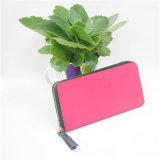 Koreanische Art-Form-beiläufige Handtasche (GB#00127)