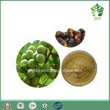 100%の自然な洗剤のSapindusのMukorossiのエキスのSoapnutのサポニン40% -70%