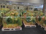 Haut de page fabricant OEM 50kVA Groupe électrogène Diesel silencieux