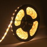 SMD 코드 LED는 2835 LED 지구 60LED/120LED/M 빛을 분리한다