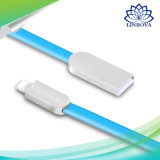 da liga lisa do zinco do macarronete de 1m cabo cobrando rápido do carregador dos dados da sincronização do USB para SE 7 6 6s 6 positivo do iPhone 7 mais 5 5s o iPad 4