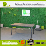 Modern Design Outdoor Garden Furniture Rattan Dining Set