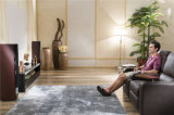 Wohnzimmer-Sofa mit dem modernen echtes Leder-Sofa eingestellt (800)