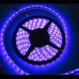 Luz de tira de la flexión LED 5050 SMD