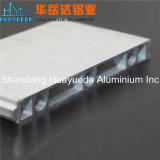 Profils en aluminium d'aluminium de Matt anodisés par argent
