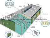 Полинянный пакгауз стальной структуры промышленный (LS-SS-102)