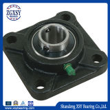 Ucp / Ucf / Ucfl / Uct / Ucpa Series Inox Chorme Steel Pillow Block Bearing