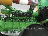 Generatore del biogas dell'azienda agricola 20kw della mucca
