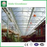 다중 경간 꽃 식물성 플레스틱 필름 녹색 집