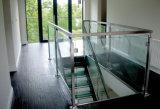 Системы Railing патио самомоднейшей конструкции структурно стеклянные/стеклянных балюстрады для напольного