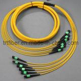 SM du cordon de connexion de fibre optique MPO- MPO (cavalier de fibre)
