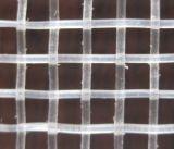 [هدب] مضادّة حشرة تشبيك/شفّافة حشرة شامة