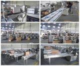 Professioneller voller automatischer Karotte-Kissen-Verpackungsmaschine-Preis