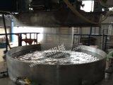 De roterende Machine van de Film van de Matrijs van het Merk van Ruipai van de Matrijs Roterende pp Geblazen
