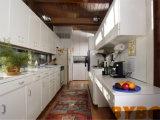 Armadio da cucina modulare della lacca di legno elegante classica (BY-L-111)