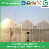 농업 다중 경간 설치를 위한 플라스틱 녹색 집