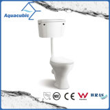 Туалет Washdown двухкусочный одиночный полный (ACT6840)