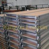 Walkboard d'échafaudage en aluminium