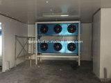 Chambre froide de taille moyenne /Cold Storage pour chiller/réfrigérateur