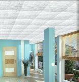Plafond de la construction d'administration du moule en mousse de polystyrène