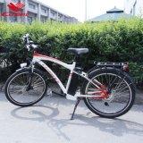 Bici eléctrica de la montaña de 26 hombres de la pulgada (CB-26MT02)