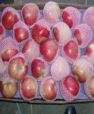 2006 Новый Сезон свежих яблок
