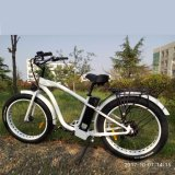 En15194 Approved 48V/500W/750W MTB Fat Draws Ebike for Beach Cruiser