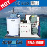 Contrôle facile 1000kg de glace Flake Making Machine pour les pêches