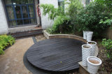 Pavimentos de pavimento em aço inoxidável padrão europeu WPC / Plastic Decks
