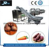 Rizoma, produtos hortícolas de folha na rota de Ar Limpo