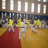 Stuoie d'attacco di judo di Tatami di stile di arte marziale