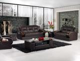 Projeto moderno do sofá com os sofás do couro genuíno
