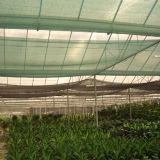 Rede nova agricultural da máscara do PE com UV (YHZ-SDN02)