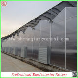 Grande serra della lamiera sottile del PC di irrigazione goccia a goccia della Muti-Portata dal fornitore della Cina