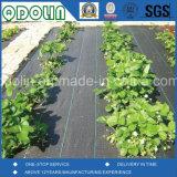 Tessuti della barriera della stuoia del coperchio al suolo/Weed dei pp/Weed con il quadrato di Rutet