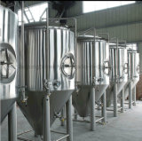serbatoio di putrefazione usato commerciale della birra 5bbl