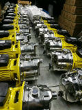 Насос двигателя затравки собственной личности турбинки Js-80s 0.55kw латунный