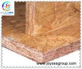 Qualität orientierte billig Strang-Vorstände OSB für Möbel und Innenaufbau