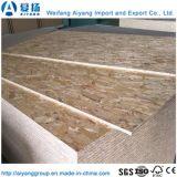 4*8 E2 Decoração Cola OSB Board de Shandong