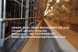 Het automatische Systeem van de Apparatuur van de Kooien van de Kippenren van het Landbouwbedrijf van het Gevogelte voor de Kip van het Ei van de Laag (het Frame van het Type van H)
