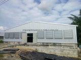 Matériel et Chambre de poulet de structure métallique de bonne qualité