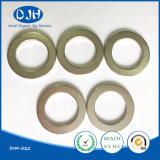 Aimant d'anneau NdFeB à aimants magnétiques frittés permanents pour moteur (DRM-022)