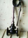 Válvula de Control de Auto-Accionado Temperatura (GAZZWP)