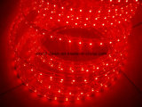 110V 220V rojo de la luz de la Cuerda (HVSMD-3528-60, HVSMD5050-30)