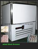 - 35 Graden van het Roestvrij staal Commercial Blast Freezer van C voor Meat Chilling (BF-2S)