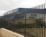 6FT*8FT Revêtement noir Spear haut Palissade/clôture ornementale forgé en acier