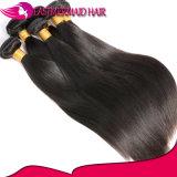 100% Евразийской прямо способствует закрытию волосяных луковиц природного сырья Virgin волос человека