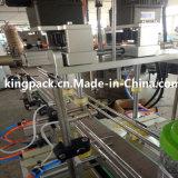 Capsuleuse Automatique Machine de plafonnement du bec de canard linéaire